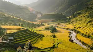 Vietnam Tan An