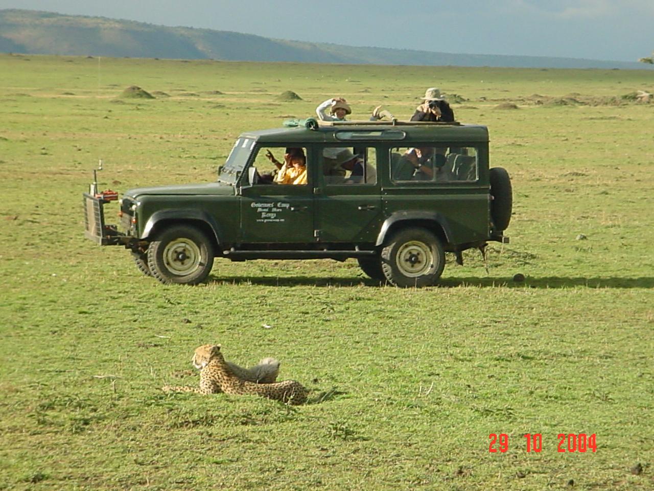 serengeti szafari: afrikai szafari pihenéssel